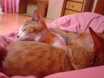 2010Apr4-Lilina&Ram1.jpg
