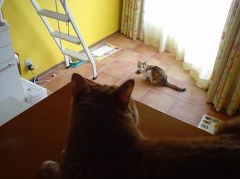 2010Apr4-Lilina&Ram3.jpg