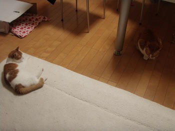 2010Feb12-Hingiku&Char2.jpg