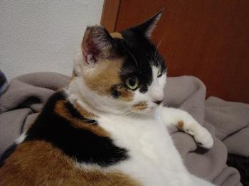 2010Jan11-Donna5.jpg