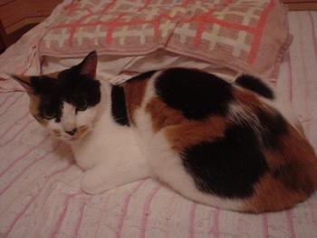 2010May24-Donna5.jpg