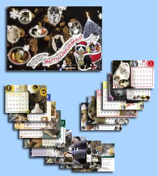 2011 卓見本.jpg