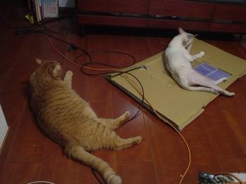 2011June22-Sunny&Ram.jpg