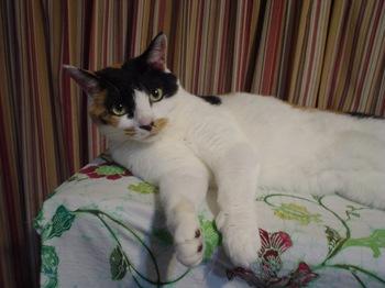 2011May22-Donna5.jpg